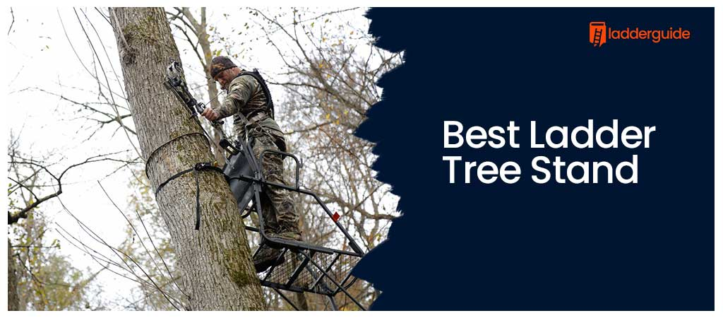 Best Ladder Tree Stand